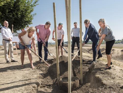 Začala stavba školy - sázení lípy