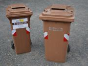 Ilustrační obrázek třídění bioodpadu